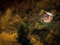 Örümcek Ormanları'ndan 'Sonbahar'