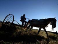 'At Tırmığı'na Sıkışan Çocuk Öldü