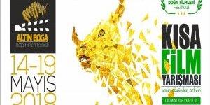 Altın Boğa Doğa Filmleri Festival Hazırlıkları