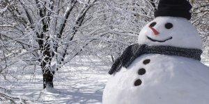Sarıkamış'a Kar Yağdı
