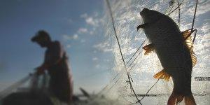 Elektrikle Balık Avlayan 4 Kişi Yakalandı