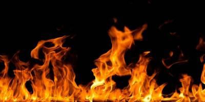 Digor'da Yangın: 13 Hayvan Telef Oldu