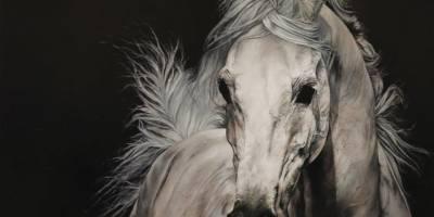 Kars'ın Yılkı Atları