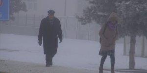 Kars ve Ağrı'da Yoğun Sis