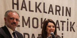 HDP, Kars Projelerini Açıkladı