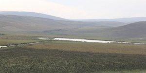 Doğal Sit Alanı Lavaş Gölü Kuruyor