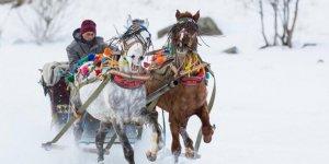 Atlı Kızaklar Sezonu Açtı