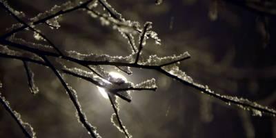 Ardahan Yağan Karla Beyaza Büründü