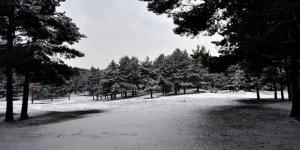 Kars ve Sarıkamış'ta Kar Manzaraları