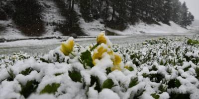 Sarıkamış'a Lapa Lapa Kar Yağdı