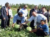 Iğdır Valisi Çiftçileri Tarlada Ziyaret Etti
