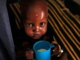 Dünyada 870 milyon Kişi Açlık ÇEKİYOR