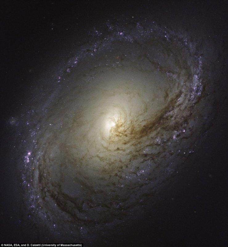 Hubble'in Çektiği En Yakın Galaksiler