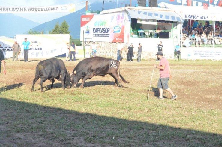 Artvin Kafkasör Festivali Başladı