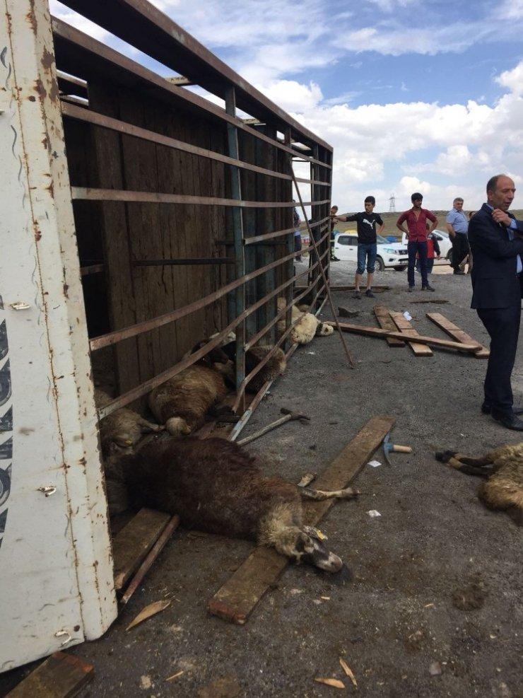 Digor'da Trafik Kazası: 1'i Ağır 4 Yaralı