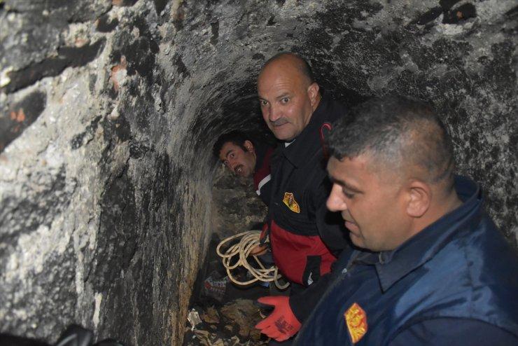 Kars'ta At Kurtarma Operasyonu