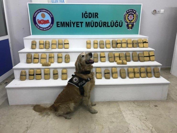 Iğdır'da Narkotik Operasyonu