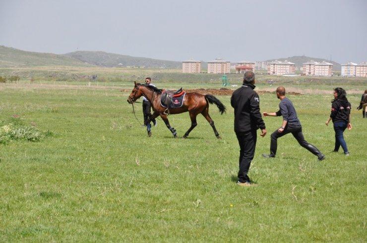 KAÜ'de 'At Yarışları' Yapıldı