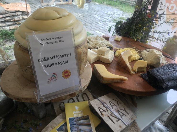 Susuz'da 'Anadolu Peynirleri' Tanıtıldı
