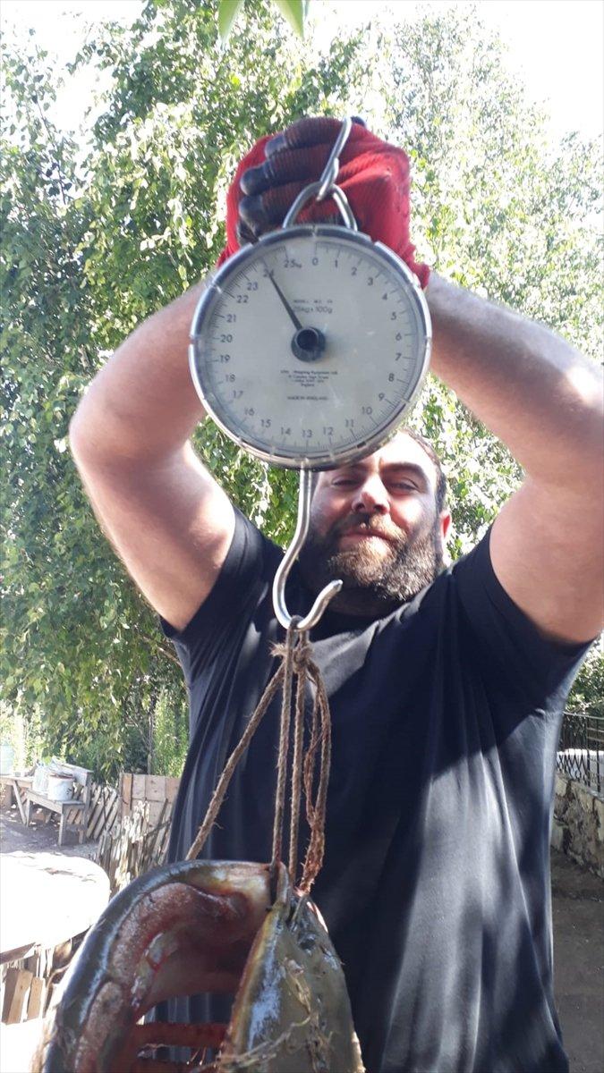 Aras'ta 1,5 Metrelik Yayın Balığı Yakalandı