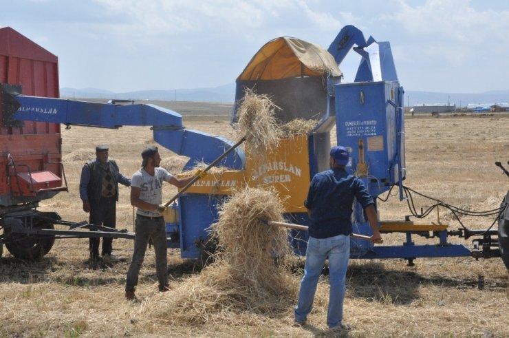 30 Derecede Köylüler 'Patos' Vuruyor