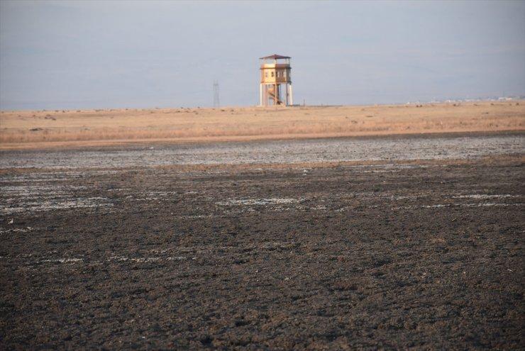 Kuyucuk Gölü'ne Sondajla Su Verilecek