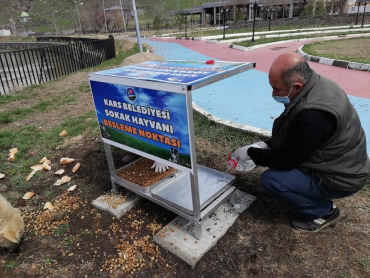 Kars'ta Sokak Hayvanları İçin Beslenme Noktası