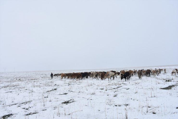 Kar Yağışı Çobanlara Zor Anlar Yaşattı
