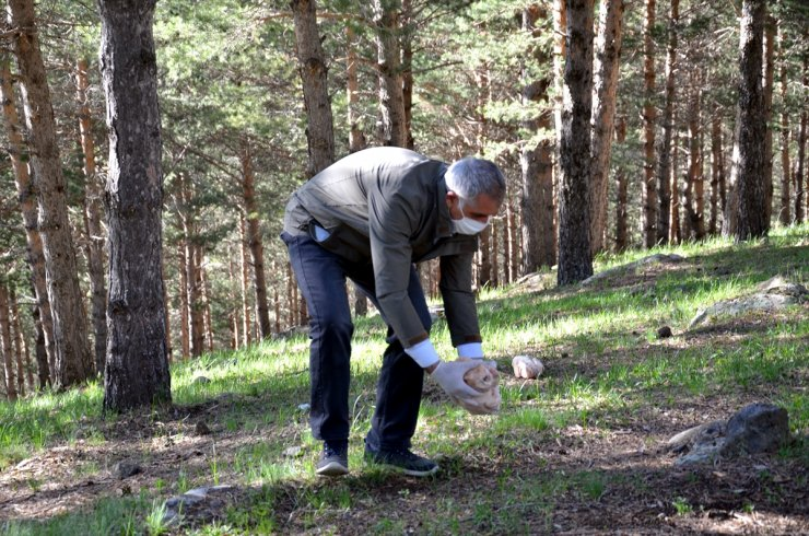 Boz Ayılar İçin Ormana Yiyecek Bırakıldı