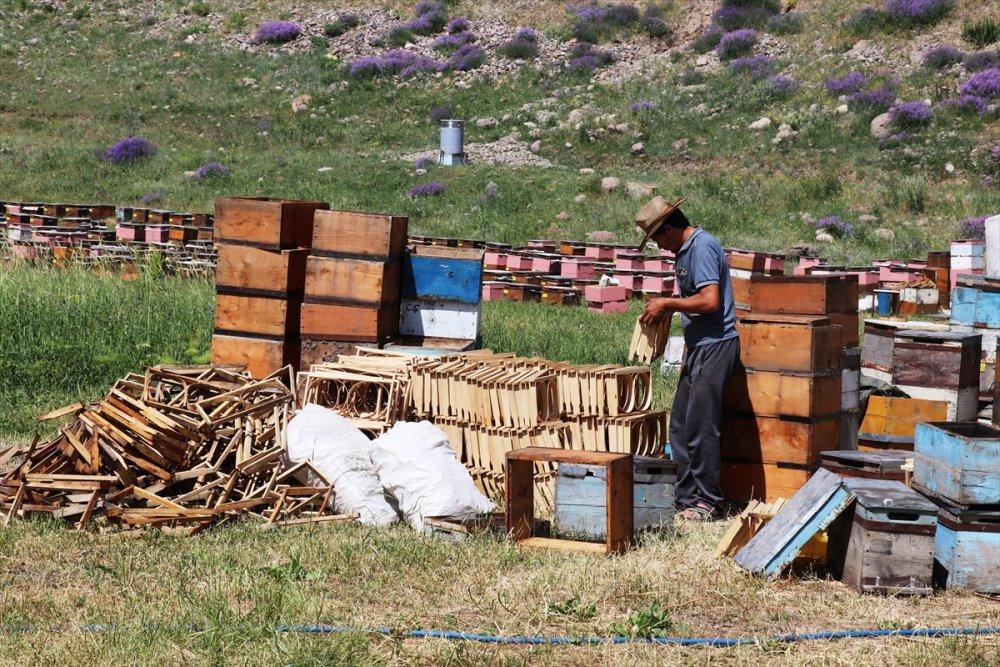 Karadeniz'in Göçer Arıcıları Ağrı'da