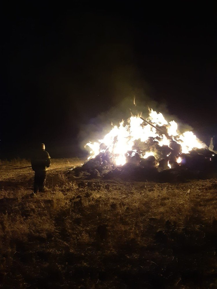 Arpaçay'ın Değirmenköprü Köyünde Ot Yangını
