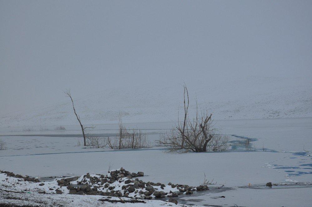 Kars'ta Soğuk Hava ve Sis