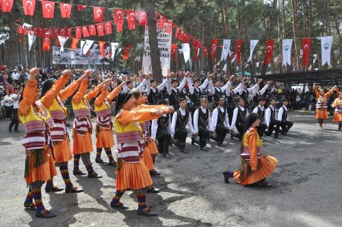 Ardahan'da Bal Festivali