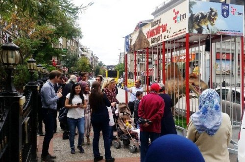 Bursa'yı Dinozorlar Bastı