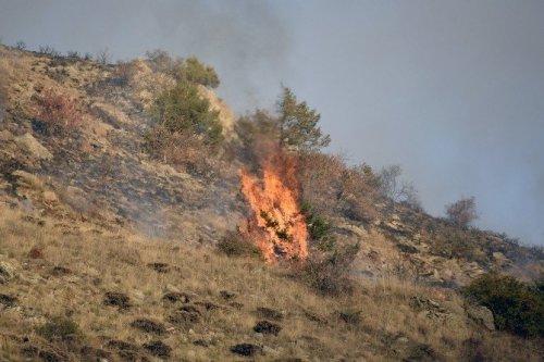 Gümüşhane'de İki Ayrı Orman ve Örtü Yangını