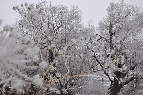 Kars'ta Kırağı, Sis Etkili Oluyor