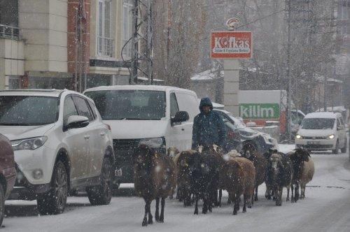 Kars'ta Lapa Lapa Kar Yağıyor
