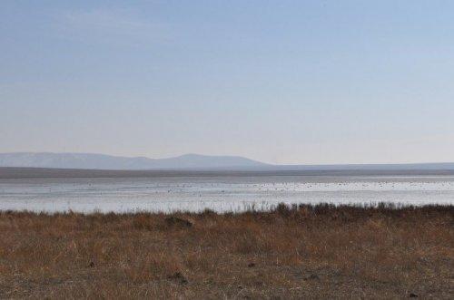 Kaymakam Öztürk, Kuyucuk Gölü'nde İncelemelerde Bulundu