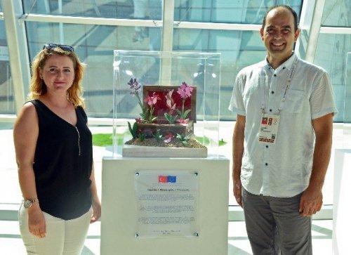 Orkideler İçin Expo 2016'da Bir Araya Geldiler