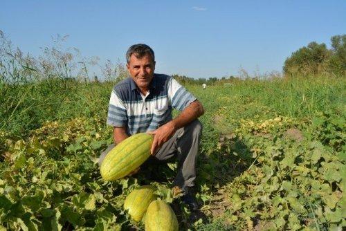 Örnek Çiftçi Bir İlki Daha Başardı