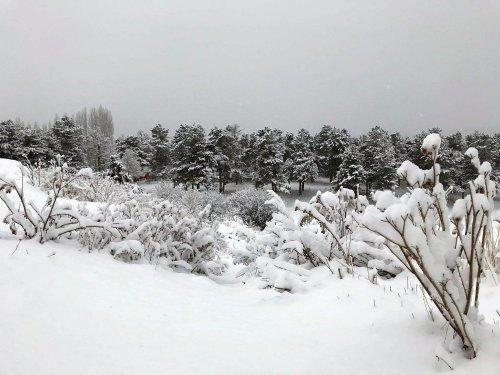 Sarıkamış'tan Kar Manzaraları