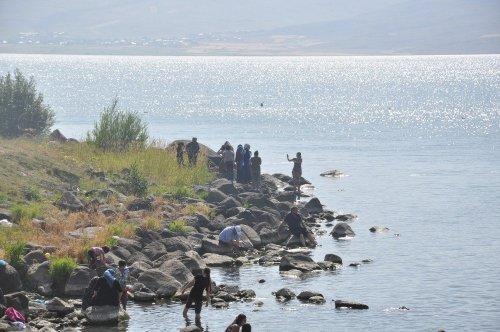 Sıcaktan Bunalan Çıldır Gölü'ne Atladı