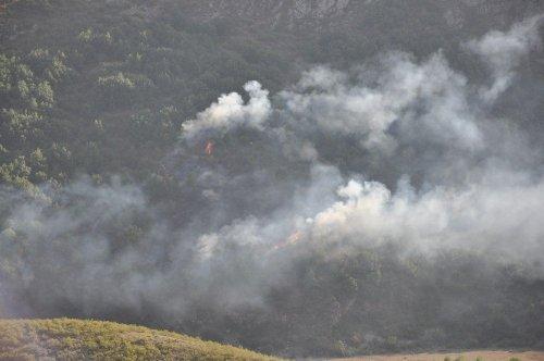 Susuz'da ki 'Hatıra Ormanlık Alan'da Yangın